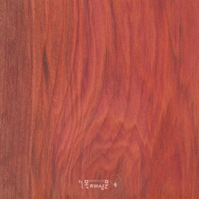 http://www.woodkorea.co.kr/news/photo/201708/28136_28963_454.jpg